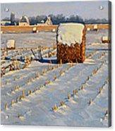 Winter Stubble Bales Acrylic Print