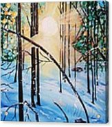 Winter Sun Acrylic Print