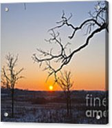 Winter Sun Ornament Acrylic Print