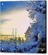 Winter Sunburst Acrylic Print