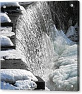 Winter Thaw Acrylic Print