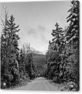 Winter Trail Through Trees Acrylic Print