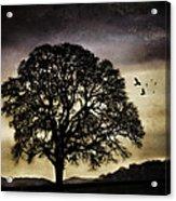 Winter Tree And Ravens Acrylic Print