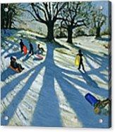 Winter Tree Acrylic Print by Andrew Macara