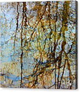 Winter Tree Reflections Acrylic Print