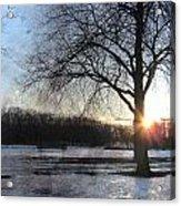 Winter Tree Sunset Acrylic Print