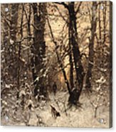 Winter Twilight Acrylic Print