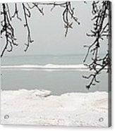 Winter Under The Apple Tree Acrylic Print