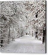 Winter Walk In Fairytale  Acrylic Print