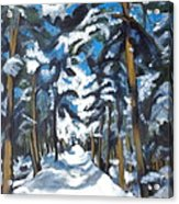 Winter Way Acrylic Print