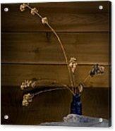 Winter Weeds In Blue Bottle Acrylic Print
