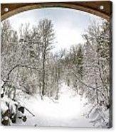 Winter Welcome Acrylic Print