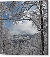 Winter Window Wonder Acrylic Print