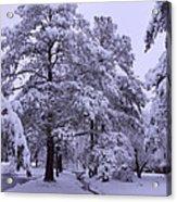 Winter Wonderland 3 Acrylic Print by Mike McGlothlen
