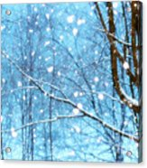 Winter Wonderland Acrylic Print by Brenda Schwartz