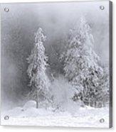 Winter Wonderland Of Yellowstone Acrylic Print