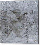 Winter Wonderland Series #01 Acrylic Print