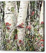 Winter Wood Jpg Acrylic Print