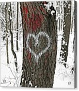 Winter Woods Romance Acrylic Print