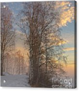 Winterday Acrylic Print by Sylvia  Niklasson