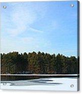 Wintergreen Winterfrost Acrylic Print