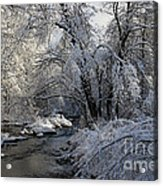 Winter's Canvas Acrylic Print