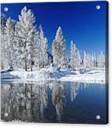 Winter's Chill Acrylic Print