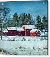 Winter's Colors Acrylic Print