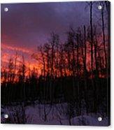 Winter's Fire Acrylic Print