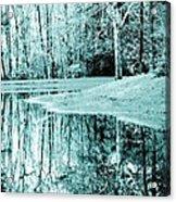 Winter's First Snowfall Acrylic Print