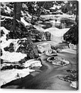 Winter's Grace Acrylic Print