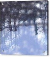 Winters' Shadow Acrylic Print