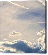 Winter's Streamlined Skies Acrylic Print