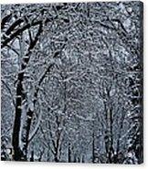 Winter's Work Acrylic Print