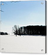 Winterscape 2  Acrylic Print by BandC  Photography