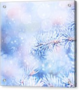 Wintertime Background Acrylic Print