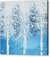 Wintry Mix Acrylic Print by Linda Bailey