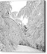 Wintry Road Acrylic Print by Conny Sjostrom