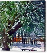 Wintry  Snowy Trees Acrylic Print