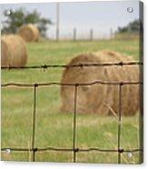 Wire And Hay Acrylic Print by Jewels Blake Hamrick