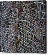 Wire Mesh Acrylic Print