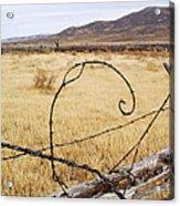 Wired Western Acrylic Print