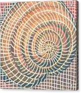 Wireframed Spiral Acrylic Print