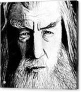 Wise Wizard Acrylic Print by Kayleigh Semeniuk