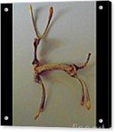 Wishbones Acrylic Print
