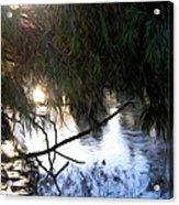 Wishkah River Acrylic Print
