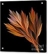Wispy Tones Of Autumn Acrylic Print