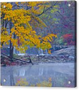 Wissahickon Morning In Autumn Acrylic Print