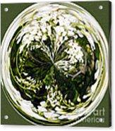 Wisteria Orb Acrylic Print