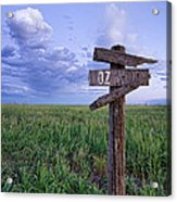 Witch Way To Oz Acrylic Print